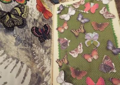 Butterflies by Sandie