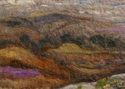 Moorland Landscape by Carole (2)